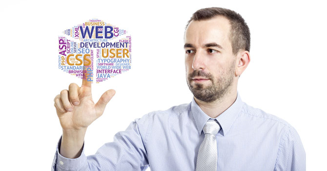 Directeur Technique Web ou CTO